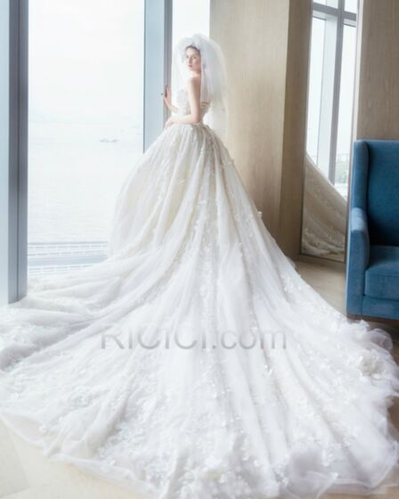 Ball Gown Lace Wedding Dress Strapless Sweetheart  Backless Church Sleeveless Luxury