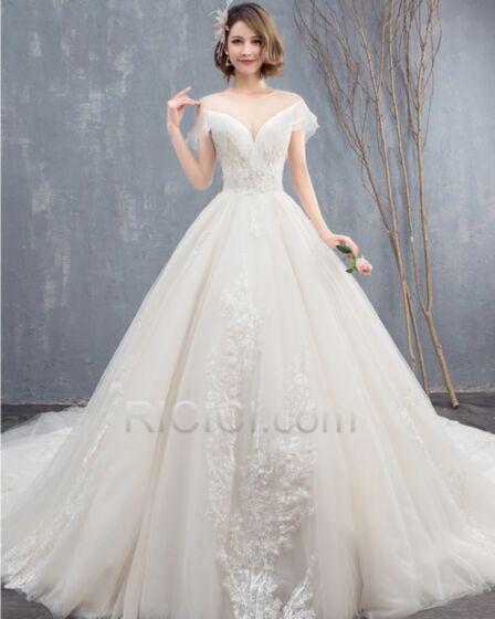 Gorgeous Appliques Long Transparent Low Cut Tulle Open Back Bridals Wedding Dress Ball Gowns