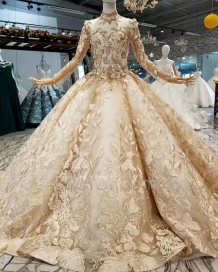 Transparent High Neck Ball Gown Gorgeous Long Sleeve Appliques Lace Charming Wedding Dress