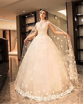 Elegant Luxury Sleeveless Spring With Lace Open Back Low Cut Hight Neck A line Fit And Flare Bridal Gown Tulle With Train