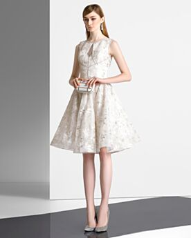 Sleeveless Champagne Homecoming Cocktail Prom Dress Embroidered Hollow Out Knee Length Fit And Flare Sexy Cute Lace Tulle