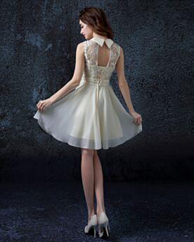 Belle Vestiti Da Sposa Colletto Peter Pan Avorio Svasato Pizzo In Tulle Fiore 3D Semplici