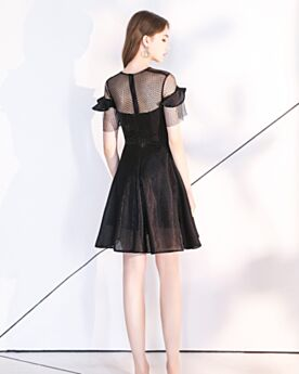 Little Black Dress Black Transparent Short Organza Cocktail Dress Cute