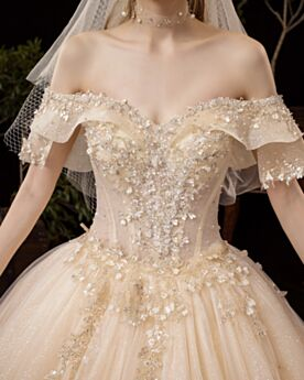 Off The Shoulder Ball Gowns Tulle Wedding Dress Champagne Glitter Sparkly Open Back Short Sleeve