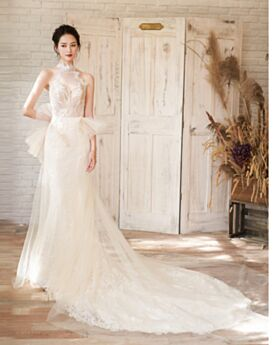 Beach Sleeveless Sheath With Train Beautiful Lace Backless Garden High Neck Bridal Gown